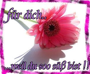 Für dich... weil du soo süß bist!!