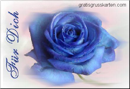 Blumen für Dich bild 6