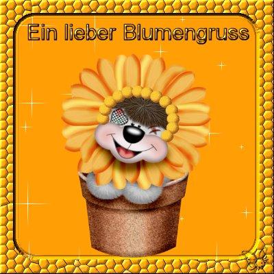 Blumen für Dich bild 4