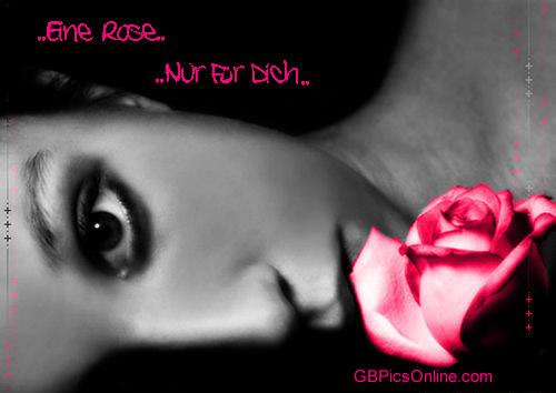 ..Eine Rose.. Nur für...