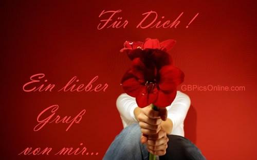 Blumen für Dich bild 1