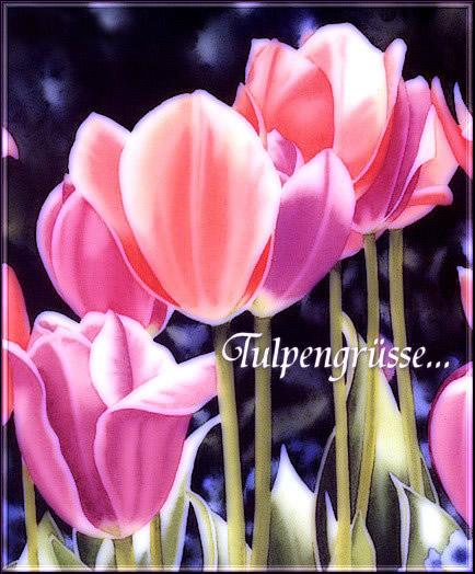 Blumen für Dich bild 3