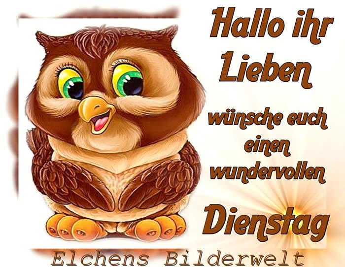 Hallo ihr Lieben wünsche...