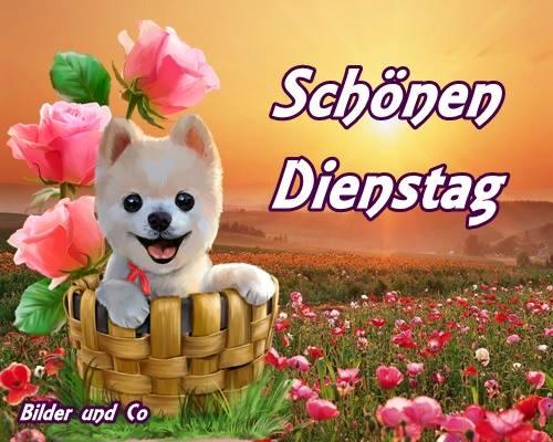 An den Beitrag angehängtes Bild: http://img1.gbpicsonline.com/gb/03/225.jpg