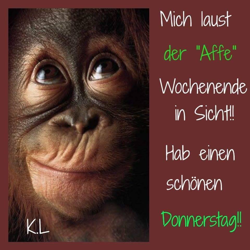 """Mich laust der """"Affe"""" Wochenende in Sicht!! Hab einen schönen Donnerstag!!"""