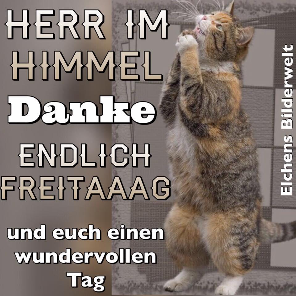 Herr Im Himmel
