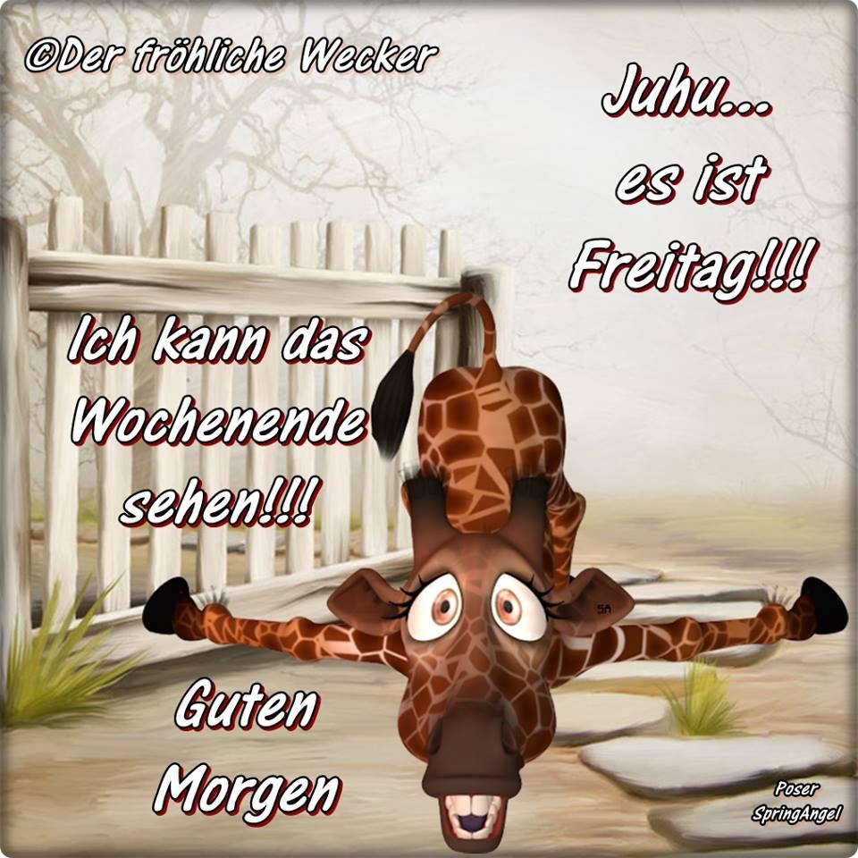 Juhu... es ist Freitag!!! Ich kann das Wochenende sehen!!! Guten Morgen.