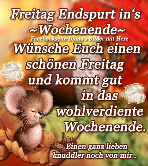 Freitag - Endspurt in's...