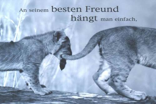 An seinem besten Freund...