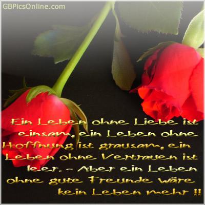 Ein Leben ohne Liebe ist...