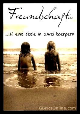 Freundschaft... ist eine Seele...