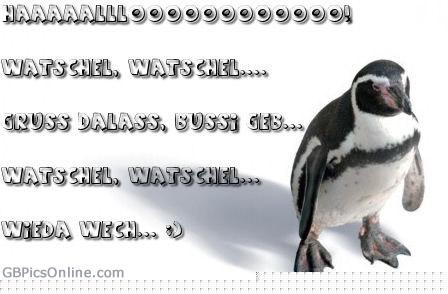 Haaaaalllooooooooo! Watschel...
