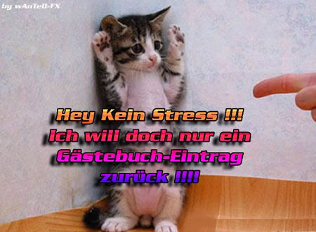 Hey, kein Stress!!! Ich will...