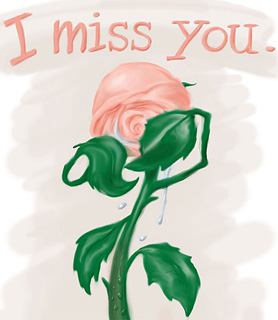 I Miss You bild 11