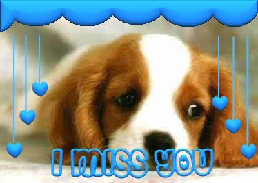 I Miss You bild 10