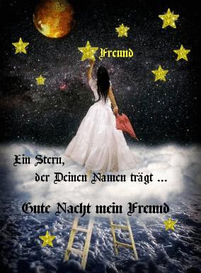 Freund- Ein Stern, der Deinen...