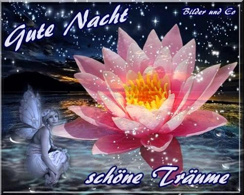 Gute Nacht, schöne...