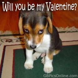 Valentine's Day bild 1