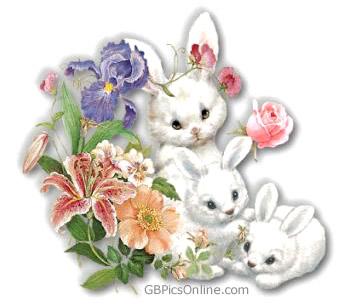 Drei weiße Hasen mit...