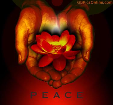 Peace bild 4