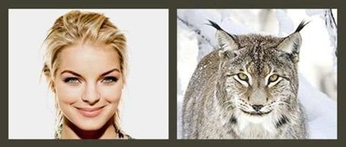 Tier Doppelgänger bild 10