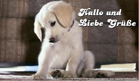 Hallo und liebe...
