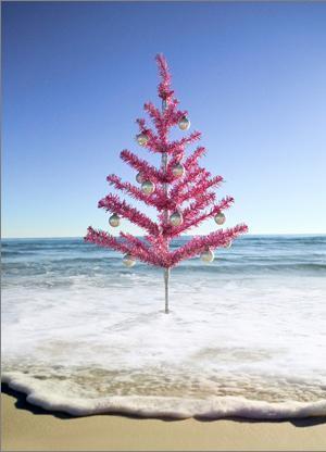 roter weihnachtsbaum am strand bild 6975 gbpicsonline. Black Bedroom Furniture Sets. Home Design Ideas
