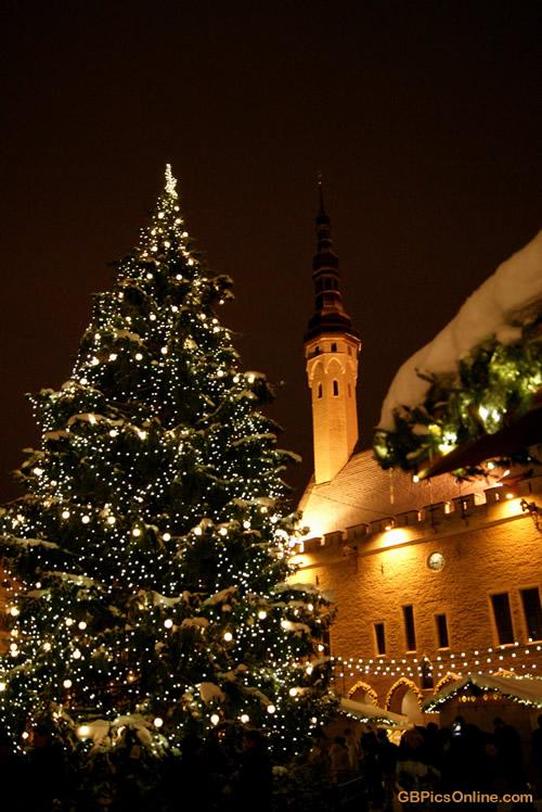 Weihnachtsbaum im Schatten der...