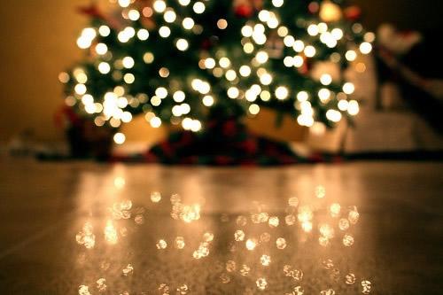 Weihnachtsbaum bild 3