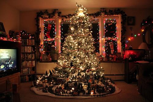 Weihnachtsbaum bild 4