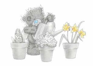 Teddybär gießt fleißig seine Pflanzen