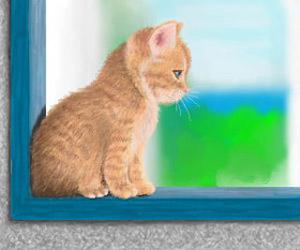 Kätzchen am Fenster
