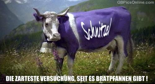 Schnitzel - Die zarteste...