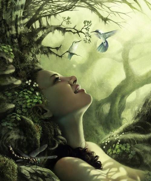 Fantasy profilbilder