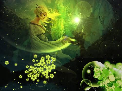 Grüner Lotusschimmer