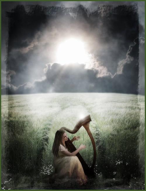 Die Harfe des Wolkenbruchs