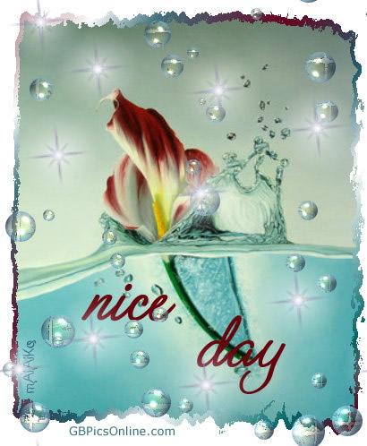 Nice Day bild 1