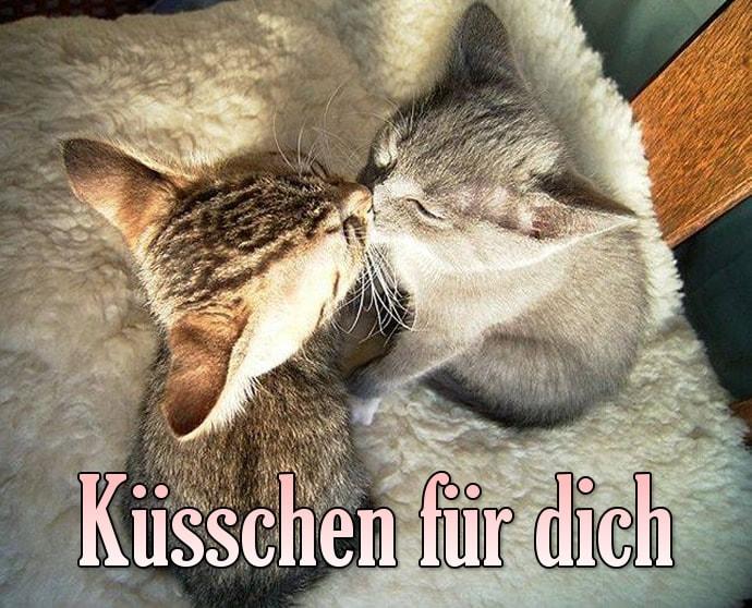 Küsschen für dich.