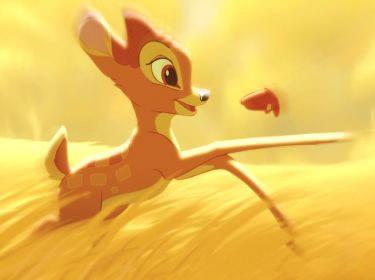 Bambi tollt im Feld herum