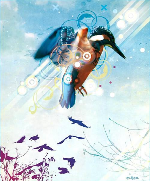 Vögel bild 2
