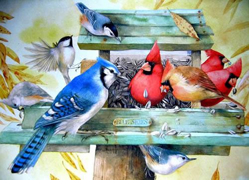 Vögel bild 15
