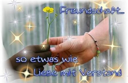 Freundschaft... so etwas wie...