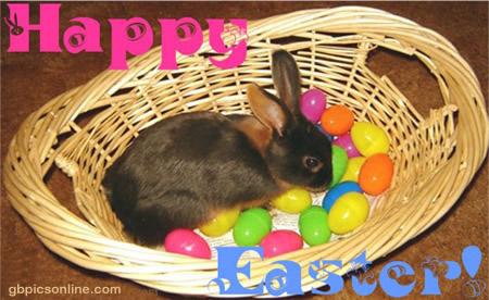 Happy Easter bild 13