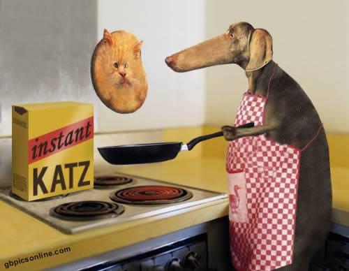 Hund macht einen...