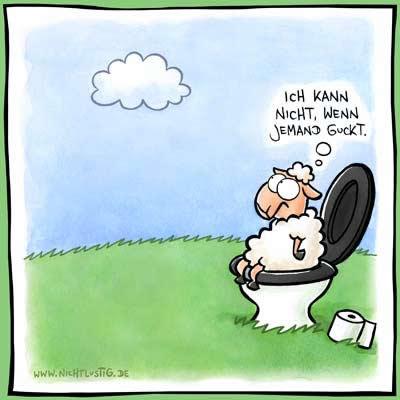 Schaf fühlt sich von...