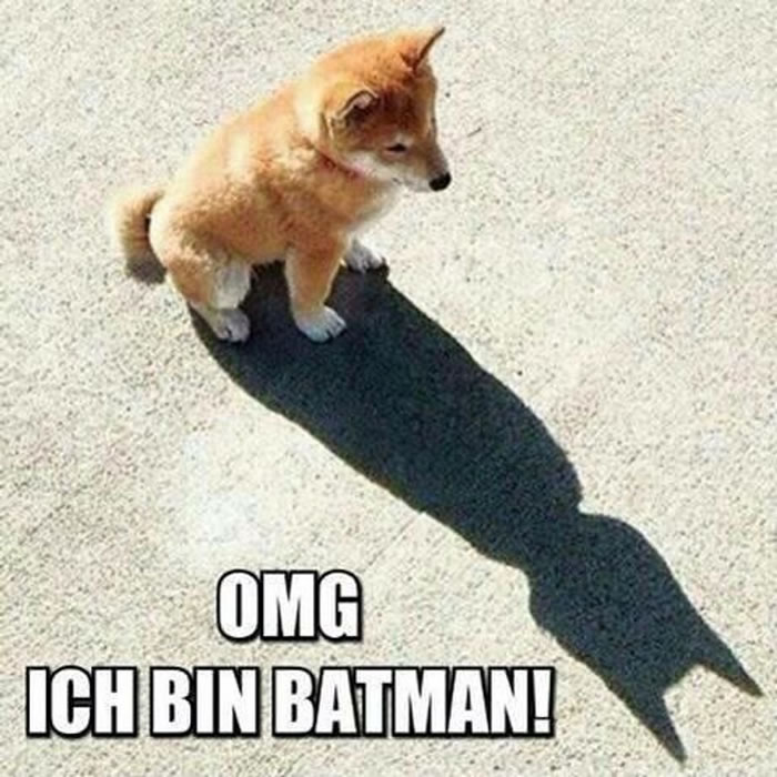 OMG - Ich bin Batman!