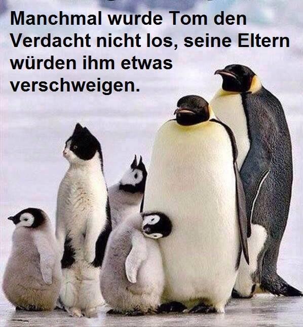 Manchmal wurde Tom den...