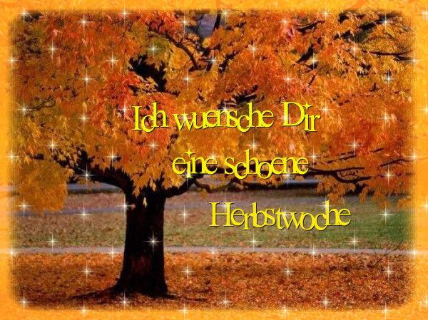 Spruche Herbst Englisch Schone Zitate Leben