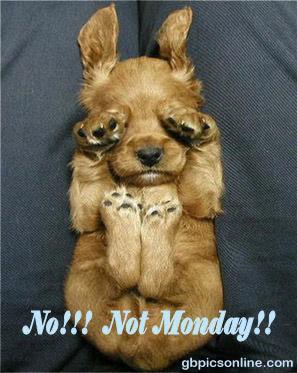 No!! Not Monday!!