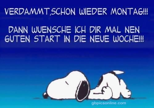 Verdammt, schon wieder Montag!!! Dann...